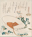 Katsushika Hokusai - Myriad grasses shell (Chigusagai) - from the series 'A shell-matching game with Genroku thirty-six l... - Google Art Project.jpg