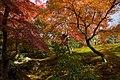 Kinkaku-ji (2660357294).jpg
