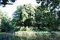 Klevenow Park Insel im Teich.jpg