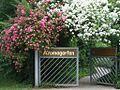 Knobloch Aromagarten Foto Eingang m Beschriftung 2008.06.JPG