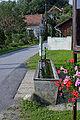 Koponja in rože.JPG