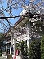 Kototoi Dango Shop 20090402 3.jpg