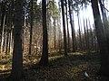 Kudowa-Zdrój, Poland - panoramio (13).jpg