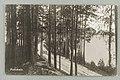 Kuikonniemi, Vanhan ja uuden harjutien risteys, Palovartijan mäki, Mustalahti, Huosiaissaari, 1930s PK0359.jpg