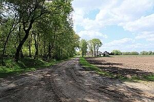 Tief Vehn (southwestern part)