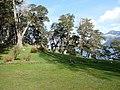 La Tapera - Huechulafquen - panoramio (3).jpg