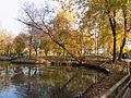 Laghetto Parco Buzzaccarini.jpg