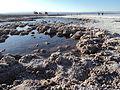 Laguna tebinquinche.JPG