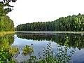 Lake - panoramio - Fr0nt (1).jpg