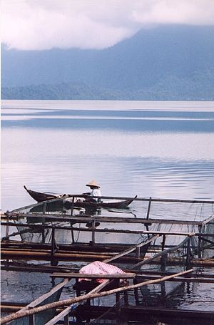 Lake Maninjau - Fisherman on Lake Maninjau