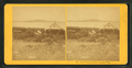 Lake Winnipeseogee, from the Weirs, from Robert N. Dennis collection of stereoscopic views.png