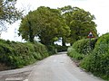 Lanes near Broadclyst, with a humpy road ahead - geograph.org.uk - 1284182.jpg