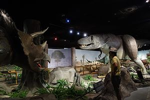 Las Vegas Natural History Museum - The dinosaur exhibit at the museum