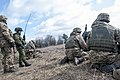 Lead in the air - live-fire exercise in Ukraine 170316-A-RH707-304.jpg