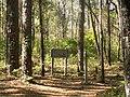 Leon Sinks Recreation Area - Crossover Trail sign.jpg