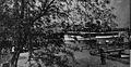 Leschi dock circa 1910.jpg