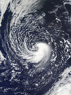Subtropical cyclone