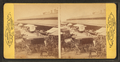 Lexington Market. Baltimore, by Chase, W. M. (William M.), 1818 - 9-1905.png