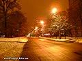 Liatoshinskiy str. at night - panoramio.jpg