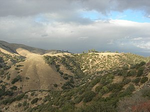 Mediterranean forests, woodlands, and scrub - Image: Liebre Mountains 001