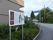 Lieferinger Kulturwanderweg - Tafel 09-2.jpg