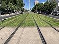 Ligne 1 Tramway Avenue Verdun Villeneuve Garenne 5.jpg