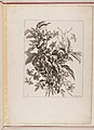 Livre de Toutes Sortes De Fleurs D'apres Nature MET DP210740.jpg