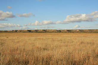 Caprock Escarpment - Image: Llano Estacado Caprock Escarpment south of Ralls TX 2009