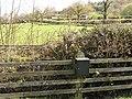 Llettycadwgan - geograph.org.uk - 404567.jpg