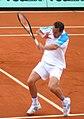 Llodra Roland Garros 2009 1.jpg