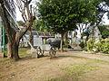 Lobo,Batangasjf9902 16.JPG