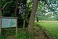 London - Kew Gardens - The Cottage Grounds - View West.jpg