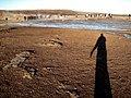 Long Tall Shadow Waiting for Strokkur to Blast (3015998303).jpg