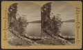 Lower Saranac Lake, by J.J. Little & Co. (Bridgeport, Conn.).png