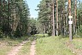 Luzhsky District, Leningrad Oblast, Russia - panoramio (4).jpg
