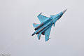 MAKS Airshow 2013 (Ramenskoye Airport, Russia) (527-11).jpg
