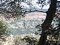 Madhojee Point - panoramio.jpg
