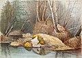 Magnus von Wright - Keväinen metsänsisus ja vedensaartamat mättäät - A I 36-20 - Finnish National Gallery.jpg