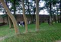 Mahn- und Gedenkstätte Memorial Ravensbrück 10.JPG