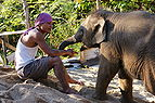 Mahout with young elephant.jpg