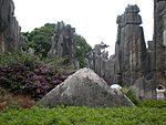 Major Stone Forest western section 09.JPG