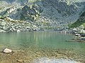 Malul Lacului Lung - panoramio.jpg