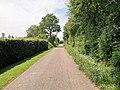 Mamer, itinéraire cyclable Nicolas Frantz (PC13) (102).jpg