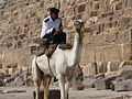 Man on a camel at the pyramids.jpg