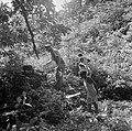 Mannen en jongens op zoek naar graven op het terrein van de voormalige Jodensava, Bestanddeelnr 252-6463.jpg