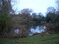 Manor House and moat, Hunston - geograph.org.uk - 93969.jpg