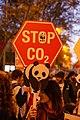 Marcha por el Clima 6 Dec Madrid -COP25 AJT5011 (49186756693).jpg