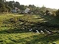 Marshy meadow, Aveton Gifford - geograph.org.uk - 1510426.jpg
