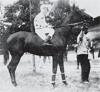 Maskette American-bred Thoroughbred racehorse