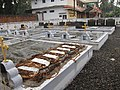 Matoor Jacobite's Church Cemetry-മറ്റൂർ യാക്കോബായ പള്ളി ശവക്കോട്ട.JPG